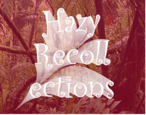 HAZY RECOLLECTIONS WEB
